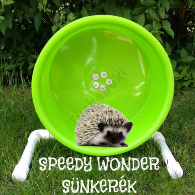 SPEEDY WONDER Sünkerék